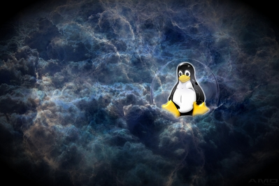 Linux in the clouds.