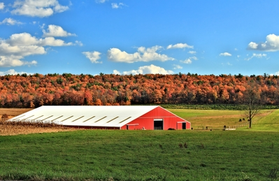 High def wallpaper of a barn with some colorful fall foliage.